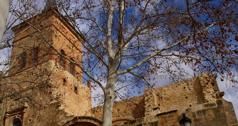 Toledo-argamasilla-de-alba