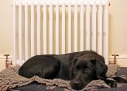 consejos calefacción