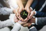 Descubre por qué es necesaria para los suelos la sostenibilidad urbana