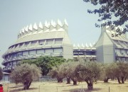 Instituto del Patrimonio