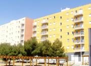 Riu Ter (Tarragona)