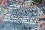 ¿Qué está pasando en las ciudades más interesantes del mundo?